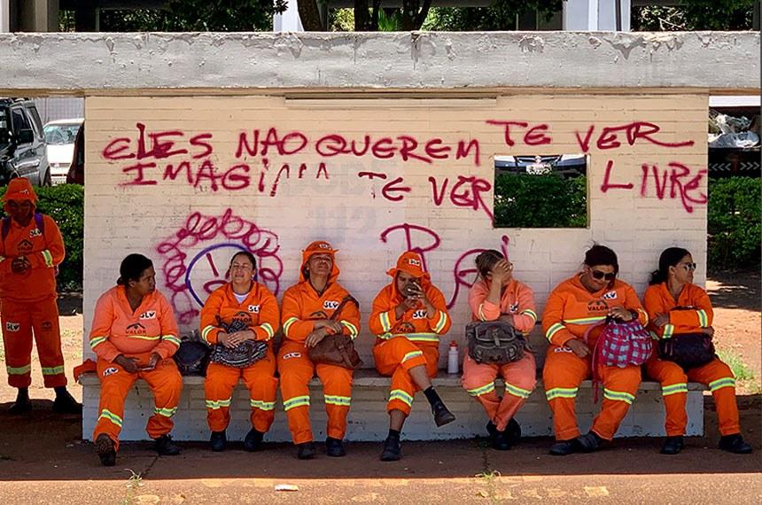 12.01.2020 Garis descansam em ponto de ônibus na 109 sul em Brasília  João Carlos Teixeira/Senado Federal