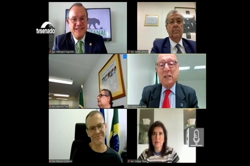 Comissão temporária externa realizou reunião remota nesta quarta-feira