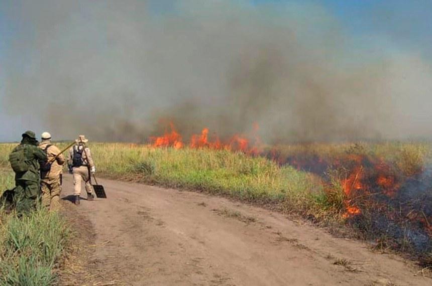 Mato Grosso MS 04 08 2020-Operação Pantanal segue com ações diárias de combate a incêndios  ações integradas do Corpo de Bombeiros Militar, Marinha do Brasil, Exército Brasileiro, Força Aérea Brasileira, PrevFogo/Ibama e Polícia Militar Ambiental   Divulgação/Corpo de Bombeiros de MS