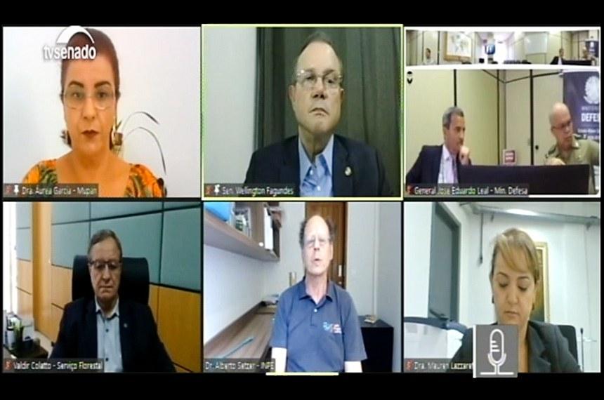 A audiência pública virtual foi promovida pela comissão temporária externa do Senado que acompanha as ações de enfrentamento aos incêndios no Pantanal