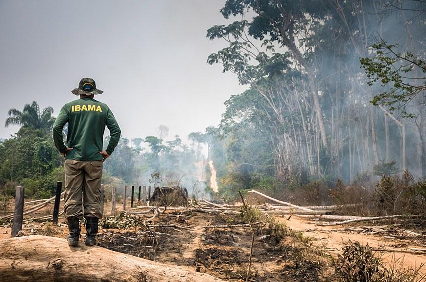BIE - 07/09/2017 -  Operação de fiscalização na Floresta Nacional do Jamanxim, no Pará.   Foto: Vinícius Mendonça/Ibama