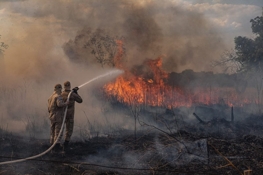 Participantes da audiência pública virtual debateram soluções para o Pantanal, que teve 26% de sua área atingidos por incêndios em 2020
