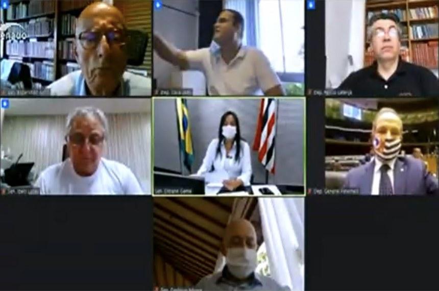 Parlamentares durante a reunião remota em que foi aprovado o relatório final da comissão