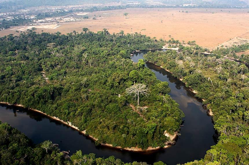 Castelo dos Sonhos, Pará Ibama combate desmatamento ilegal na região de Castelo dos Sonhos, em Altamira (PA).   Foto: Felipe Werneck/Ibama