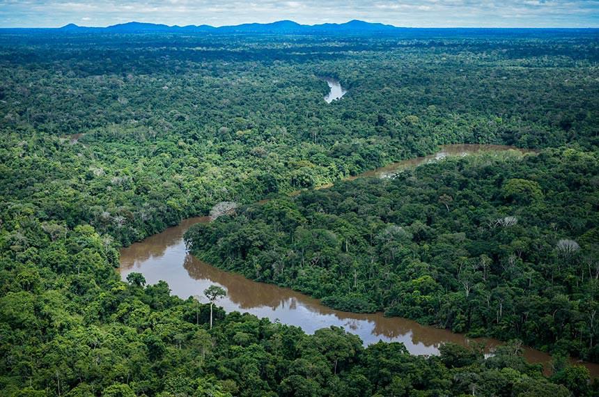 Terra Indígena Pirititi, Roraima   Ibama combate desmatamento ilegal na Terra Indígena Pirititi, Roraima.