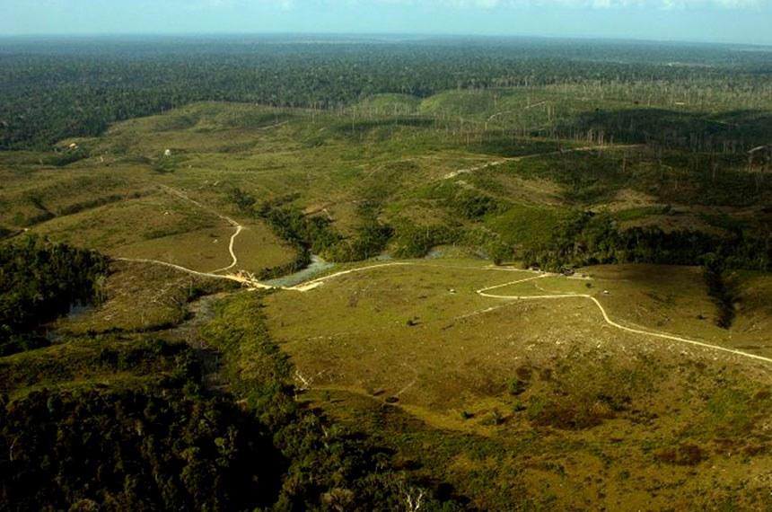 """Desmatamento para Gado. RESEX  """"Verde Para Sempre"""", Porto de Moz - Pará, Brasil."""