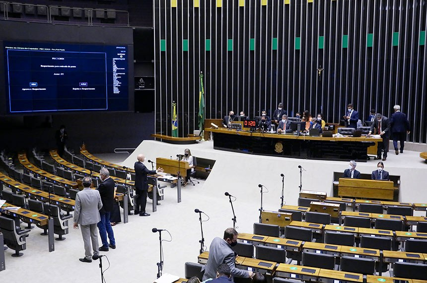 25/02/2021 - Plenário - Sessão Extraordinária  Foto - Najara Araujo/Câmara dos Deputados