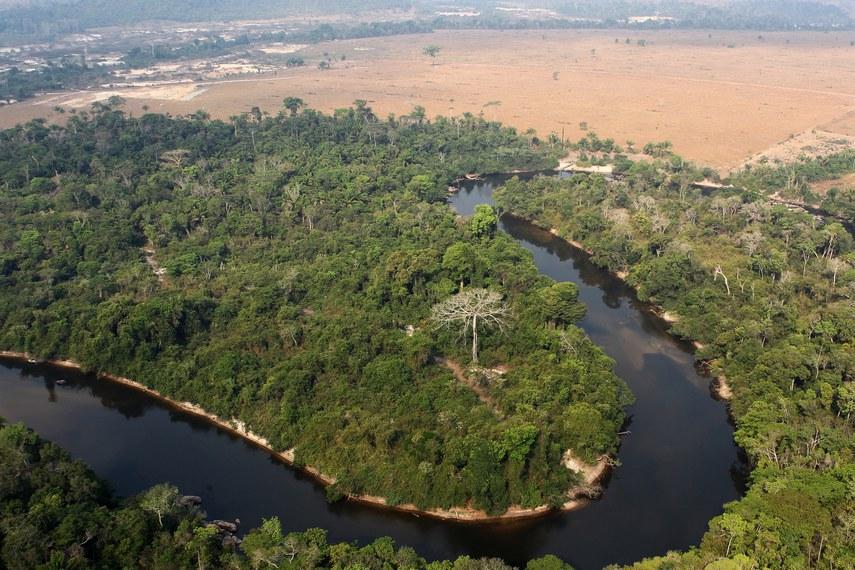 Rios do Brasil estão sob grande ameaça, apontaram participantes do webinar da Comissão do Meio Ambiente para lembrar o Dia Mundial da Água