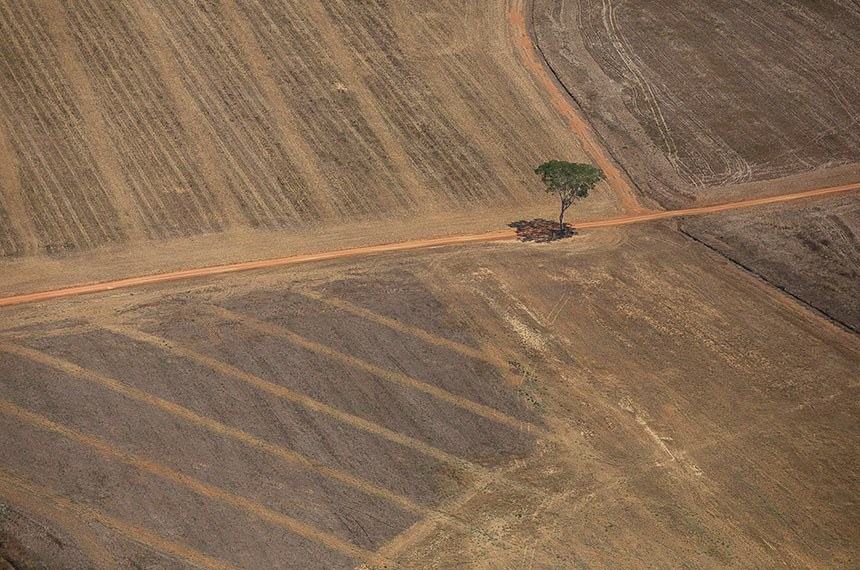 Desmatamento e Queimadas 2020- Imagem aérea de queimada próxima à Flora do Jacundá, em Rondônia Foto: Bruno Kelly/Amazônia Real