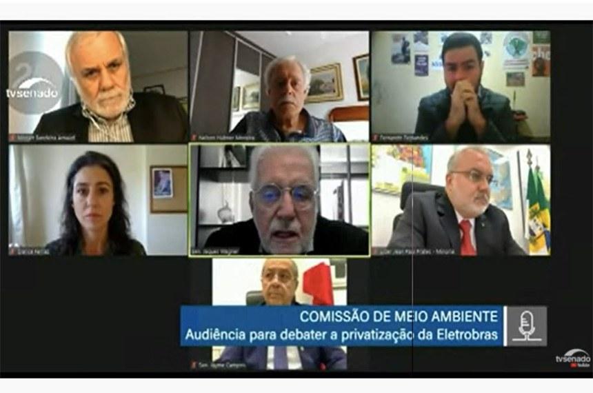 Reprodução de tela da reunião remota da Comissão de Meio Ambiente