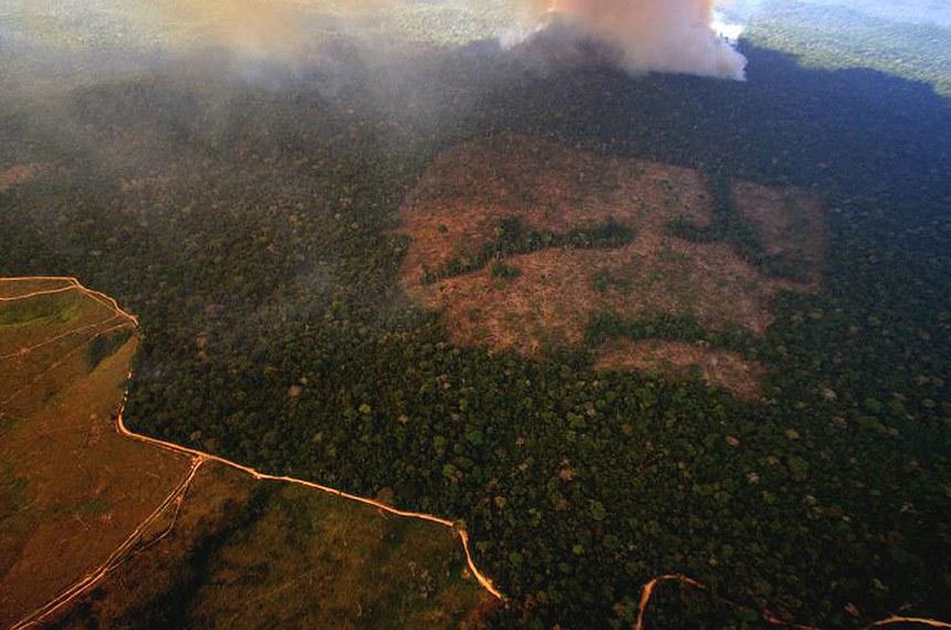 """Dia da Amazônia, Organizações Não-Governamentais (ONGs) denunciam que o governo de Jair Bolsonaro, mesmo após todo escândalo internacional sobre o aumento de focos de incêndio e queimadas no bioma, não apresentou nenhuma medida concreta de combate ao desmatamento. """"O máximo que fez foi enviar o Exército para estancar uma sangria, e tem data, o Exército em algum momento sai de lá"""", afirma o coordenador de políticas públicas do Greenpeace Brasil, Márcio Astrini."""