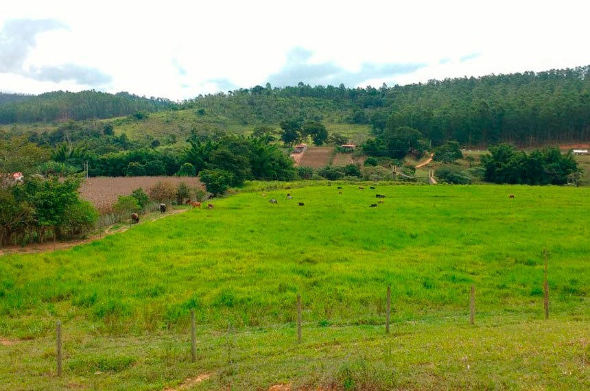 Pequena fazenda em Minas Gerais produtora de leite, com pastos abundantes e belos animais
