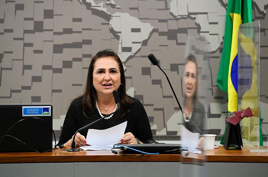 Comissão presidida por Kátia Abreu faz ciclo sobre internacionalização da economia criativa como indutora do desenvolvimento regional