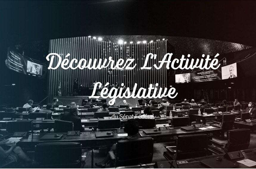 """Versão em francês da página inicial do """"Entenda a Atividade Legislativa"""""""