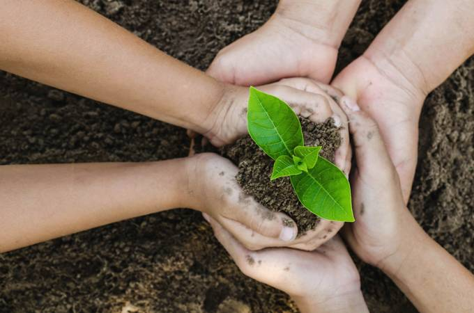 Growing concept eco Group three hand  children planting together