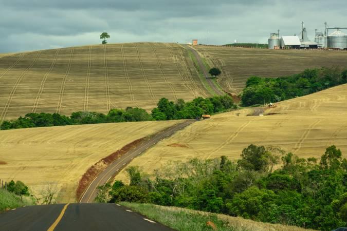 Area rural no municipio de Arapua , Vale do Ivai ,noroeste do Parana .Arapua,17/10/2013. Foto - Antonio Costa
