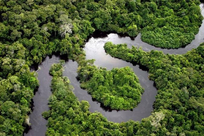 imagem aérea da floresta amazônica serpenteada pelo Rio Amazonas.