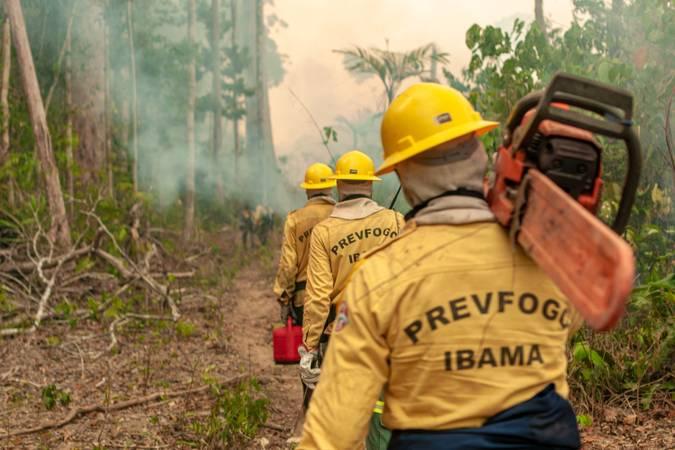 Brigada do Ibama caminhando para incêndio na Amazônia.