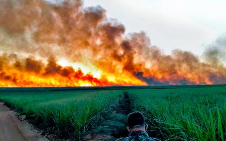 Vegetação do Pantanal em chamas.