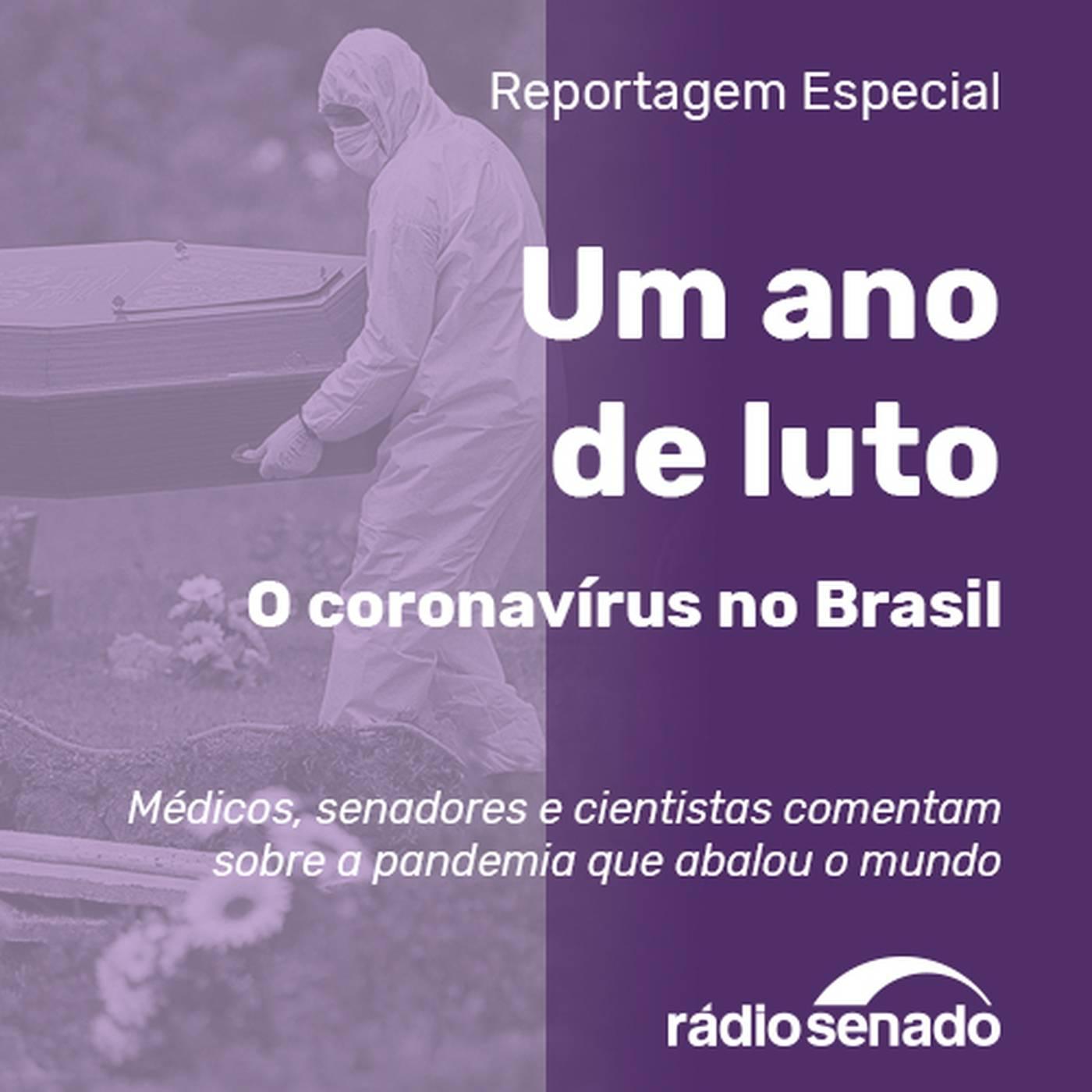Um ano de luto – O coronavírus no Brasil